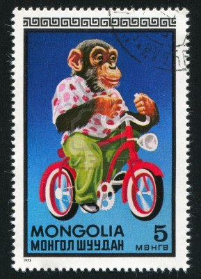 12732284-mongolia--circa-1973-stamp-printed-by-mongolia-shows-chimpanzee-on-bicycle-circa-1973